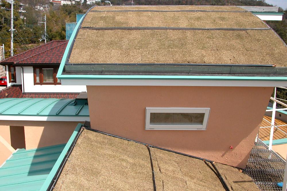 西宮市・T邸新築工事: 屋上緑化